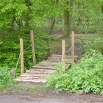 Petit pont de bois forêt Phalempin